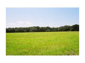 Photo of 0 SE 2 Street, Williston, FL 32696 (MLS # 332651)