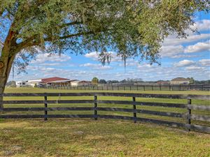 Photo of 1890 SE Highway 41, Williston, FL 32696 (MLS # 548675)