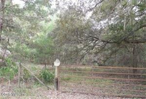 Photo of 00 COUNTY ROAD 219-A, Melrose, FL 32666 (MLS # 542688)