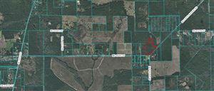 Photo of 0 NE 105th Street, Fort McCoy, FL 32134 (MLS # 563692)