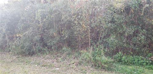 Photo of 0 Cedar Rd, Ocala, FL 34472 (MLS # 566704)