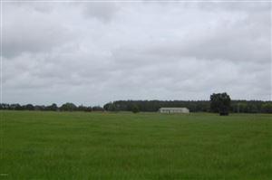 Photo of 16811 W Highway 326, Morriston, FL 32668 (MLS # 513713)