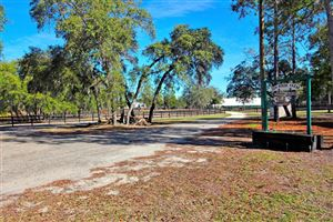 Photo of 7005 W Adirondack Street, Dunnellon, FL 34433 (MLS # 531736)