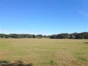 Photo of 40ac SE Hwy 42, Summerfield, FL 34491 (MLS # 547743)