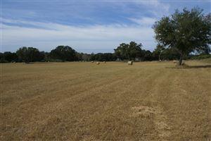 Photo of 0 S Lake Road, Mascotte, FL 34753 (MLS # 545756)
