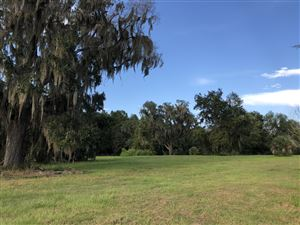 Photo of 17610 W Hwy 318 #5, Reddick, FL 32686 (MLS # 562775)