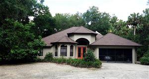 Photo of 17491 SE 34th Lane Lane, Ocklawaha, FL 32179 (MLS # 539777)