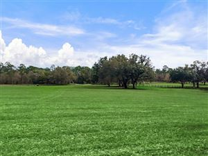 Photo of TBD NE 150th Ave, Williston, FL 32696 (MLS # 530791)