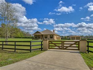 Photo of 7346 NW 83rd Court Road, Ocala, FL 34482 (MLS # 565792)