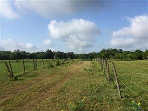 Photo of 1196 US-301, Sumterville, FL 33585 (MLS # 541823)