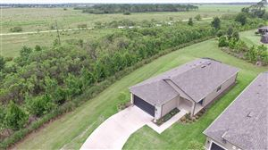 Photo of 9755 SW 76th Lane, Ocala, FL 34481 (MLS # 559827)