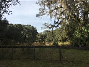 Photo of TBD NE 45th Avenue Rd, Citra, FL 32113 (MLS # 548835)