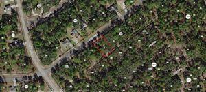 Photo of 8431 N BOLDER Drive, Citrus Springs, FL 34433 (MLS # 554870)