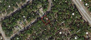 Photo of 8459 N BOLDER Drive, Citrus Springs, FL 34433 (MLS # 554871)