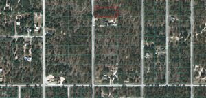 Photo of Lot 29 SW Admiral Landing Dr., Dunnellon, FL 34431 (MLS # 554875)