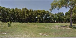 Photo of 10170 SE 58th Avenue, Belleview, FL 34420 (MLS # 565892)