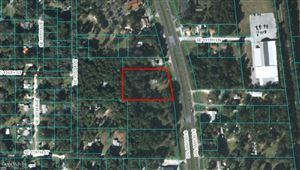 Photo of 11638 S Highway 301, Belleview, FL 34420 (MLS # 565893)