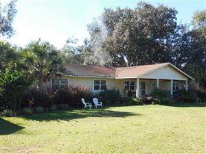 Photo of 16280 NW 112th Place, Morriston, FL 32668 (MLS # 546903)