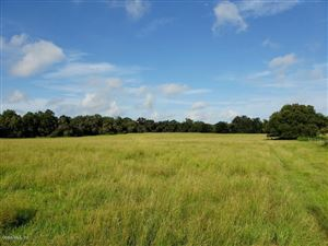 Photo of 60acres SE Hwy 475a (aka 145th St), Summerfield, FL 34491 (MLS # 540912)