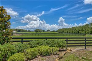 Photo of 2221 Marion County Road, Weirsdale, FL 32195 (MLS # 540922)