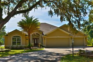 Photo of 17289 SE 165TH Avenue, Weirsdale, FL 32195 (MLS # 537947)