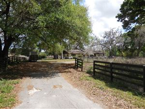 Photo of 3351 SE 186th Avenue, Morriston, FL 32668 (MLS # 548948)