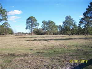 Photo of 0 NW 326 State Road, Morriston, FL 32668 (MLS # 548985)