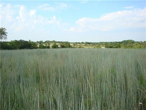 Photo of 1863 CR 1250 Road #Tract 12A, Tuttle, OK 73089 (MLS # 895266)