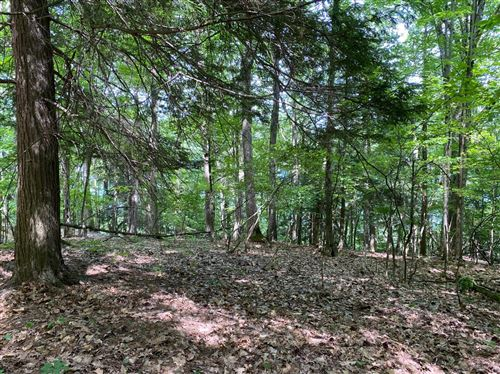 Photo of 0 State Highway 80, Springfield, NY 13468 (MLS # 131376)