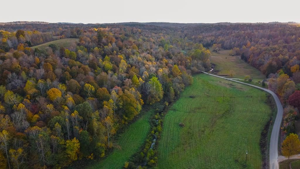 Photo of 1845 Arnold Leach Rd, Horse Branch, KY 42349 (MLS # 81305)