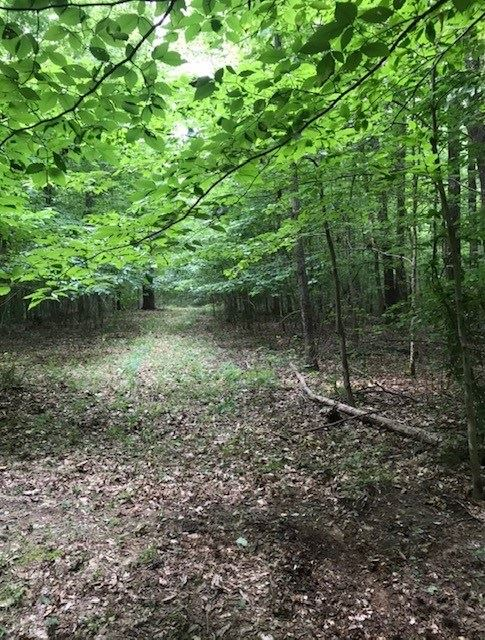 Photo of 2725 Hawesville Easton Rd, Reynolds Station, KY 42368 (MLS # 82363)