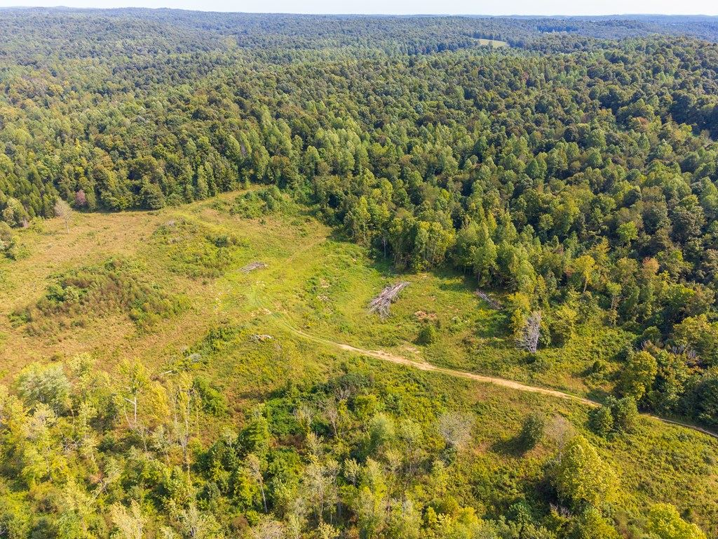 Photo of 0 Huff Creek Ln, Fordsville, KY 42343 (MLS # 82442)