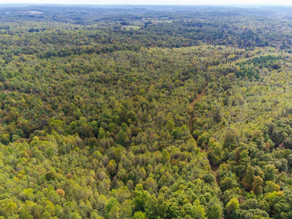 Photo of 0 Askins Rd, Fordsville, KY 42343 (MLS # 82632)