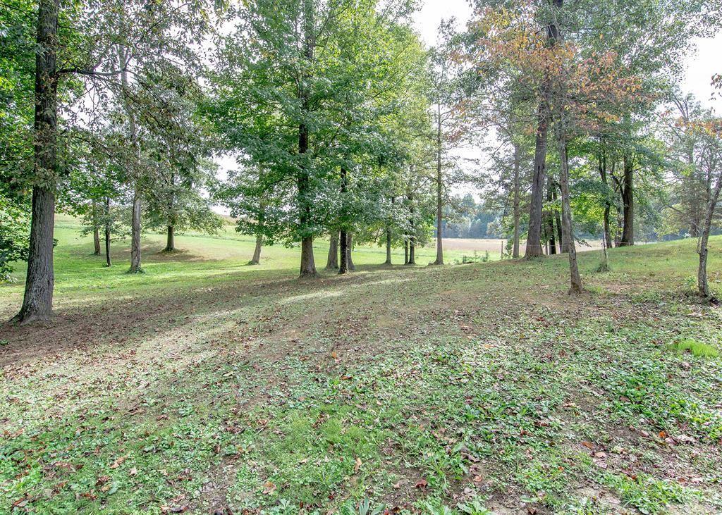 Photo of Lot 4 Big Oaks Circle, Calhoun, KY 42327 (MLS # 82651)