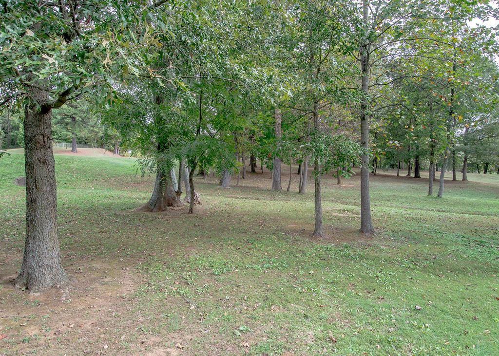 Photo of Lot 8 Hwy 81, Calhoun, KY 42327 (MLS # 82663)