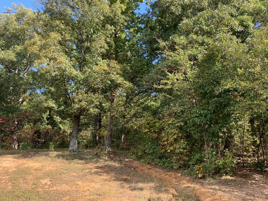 Photo of 6346 Little Hickory Road, Philpot, KY 42366 (MLS # 82668)