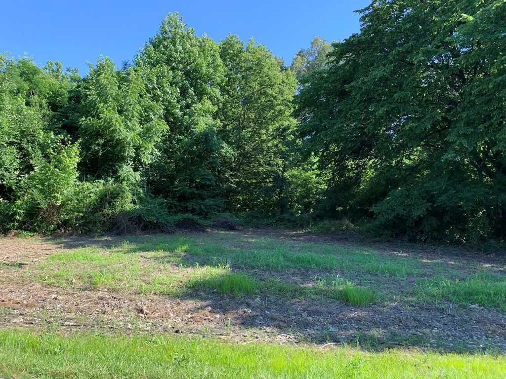 Photo of 8220 Iceland Spur, Maceo, KY 42355 (MLS # 81732)