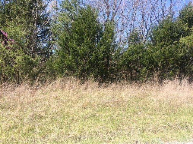 Photo of 1112 Three Acre Woods Lane, Beaverdam, KY 42347 (MLS # 79754)