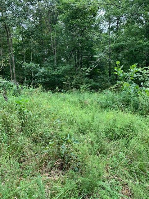 Photo of 9420 State Route 1700, Fordsville, KY 42343 (MLS # 79762)