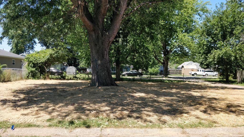 Photo of 318 Monarch St, Owensboro, KY 42301 (MLS # 81768)