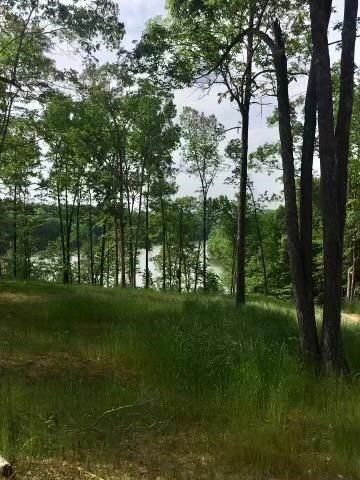 Photo of 17 0000 Indian Valley Rd, Falls of Rough, KY 40119 (MLS # 81826)