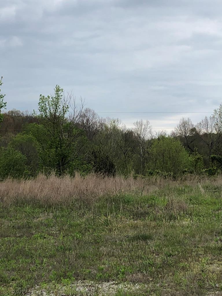 Photo of 2689 Easton, Fordsville, KY 42323 (MLS # 79886)