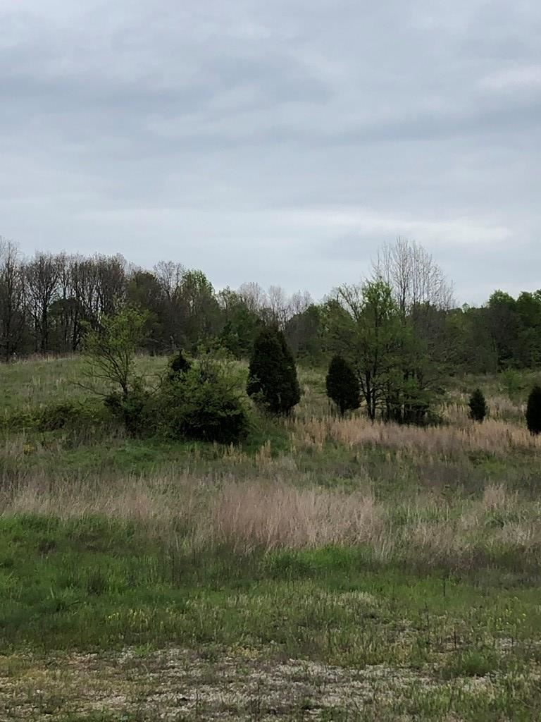 Photo of 0 Easton Rd., Fordsville, KY 42323 (MLS # 79886)