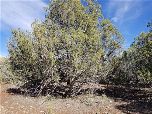 Photo of 160 Juniperwood Ranch #Lot: 160, Ash Fork, AZ 86320 (MLS # 1038374)