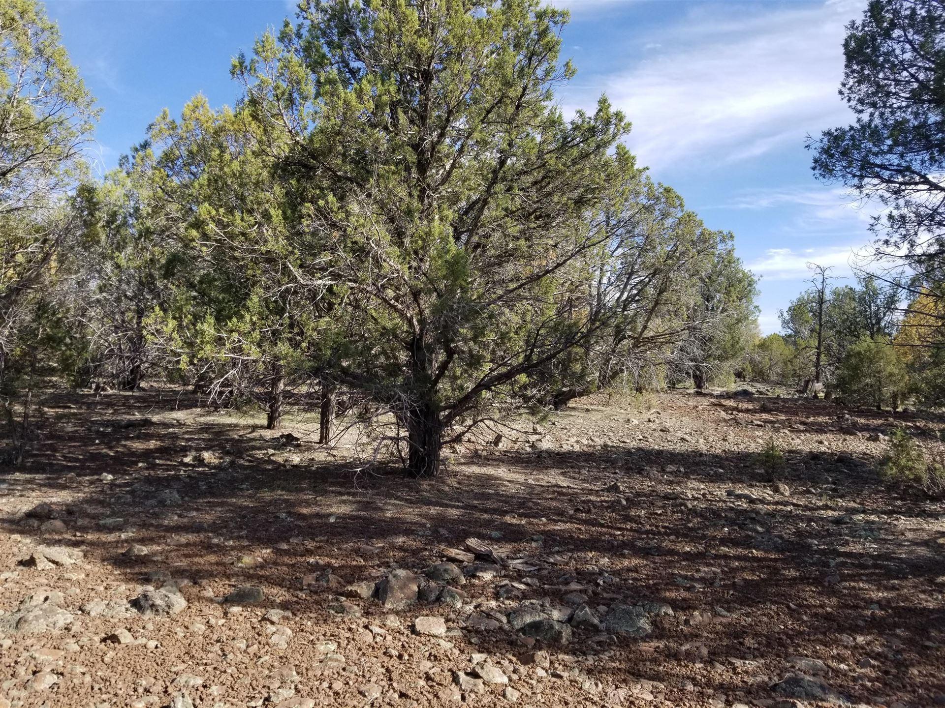 Photo of 172 Juniper Wood Ranch Road #Lot: 172, Ash Fork, AZ 86320 (MLS # 1037672)