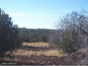 Photo of 2323 Rincon Drive #Lot: 106, Ash Fork, AZ 86320 (MLS # 1038789)