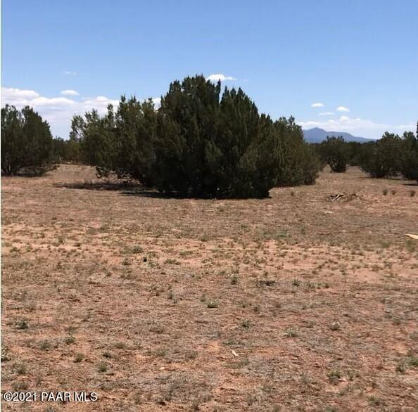 Photo of 45600 N Jacqueline Hill Drive #Lot: 12, Ash Fork, AZ 86320 (MLS # 1038989)