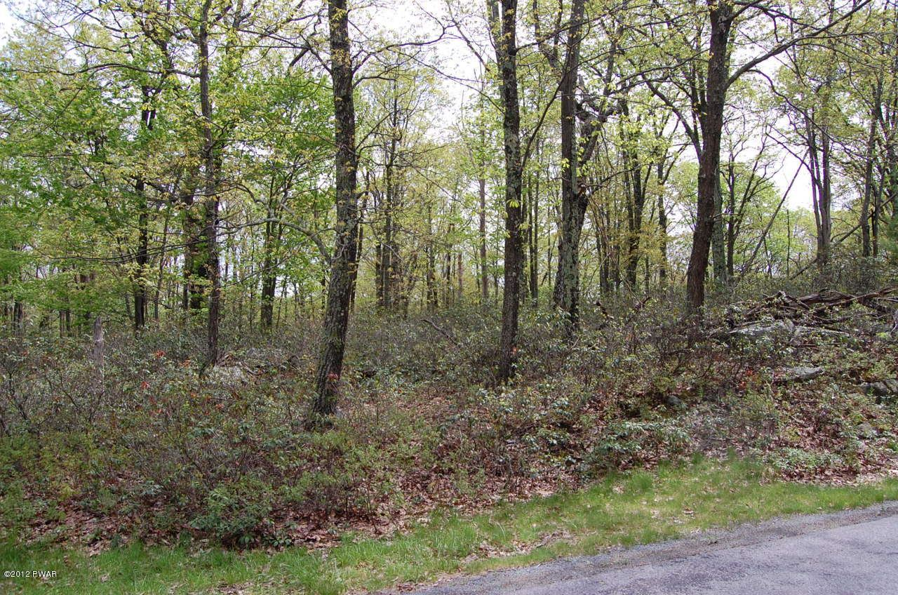 Photo of 133 Goldrush Drive, Lords Valley, PA 18428 (MLS # 21-3003)