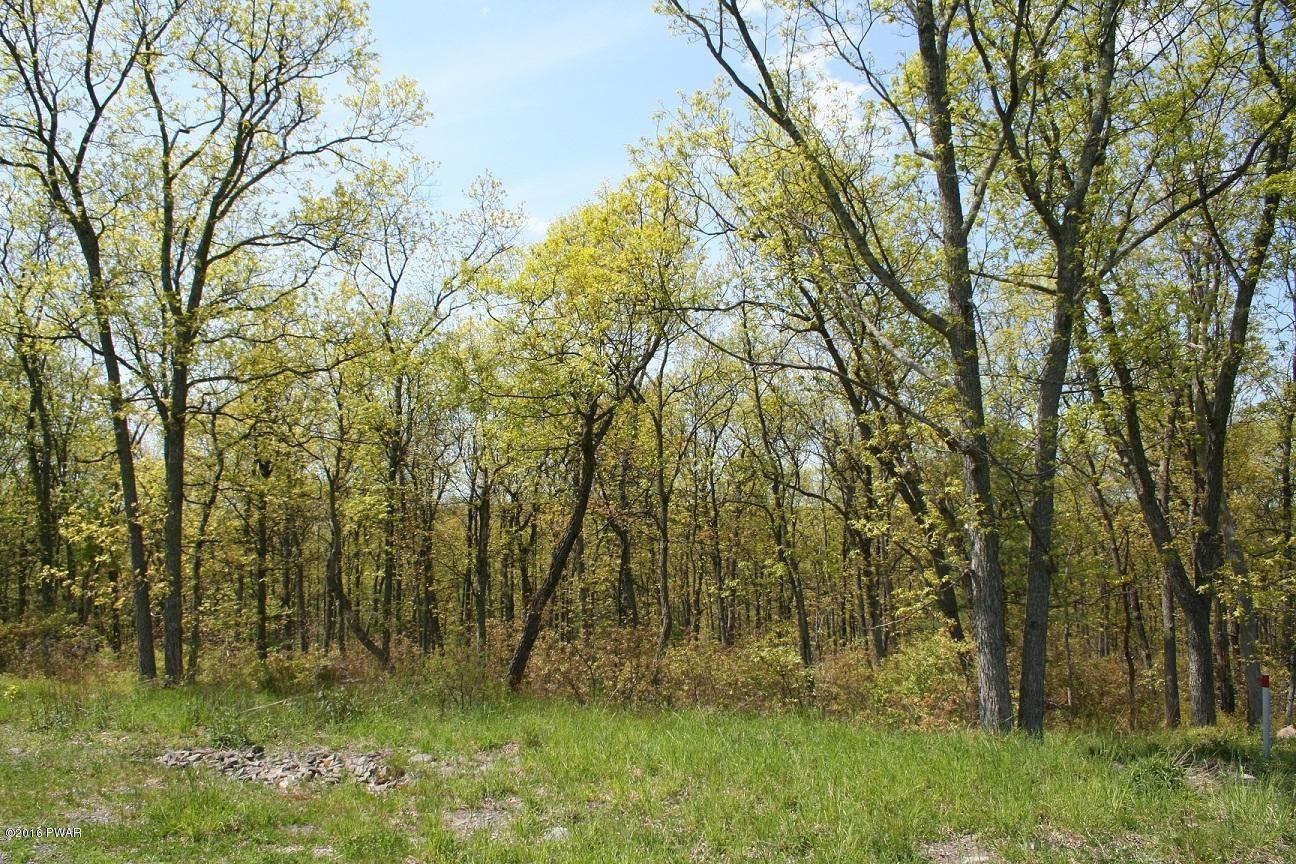 Photo of 337 Blue Heron Way, Hawley, PA 18428 (MLS # 21-2088)