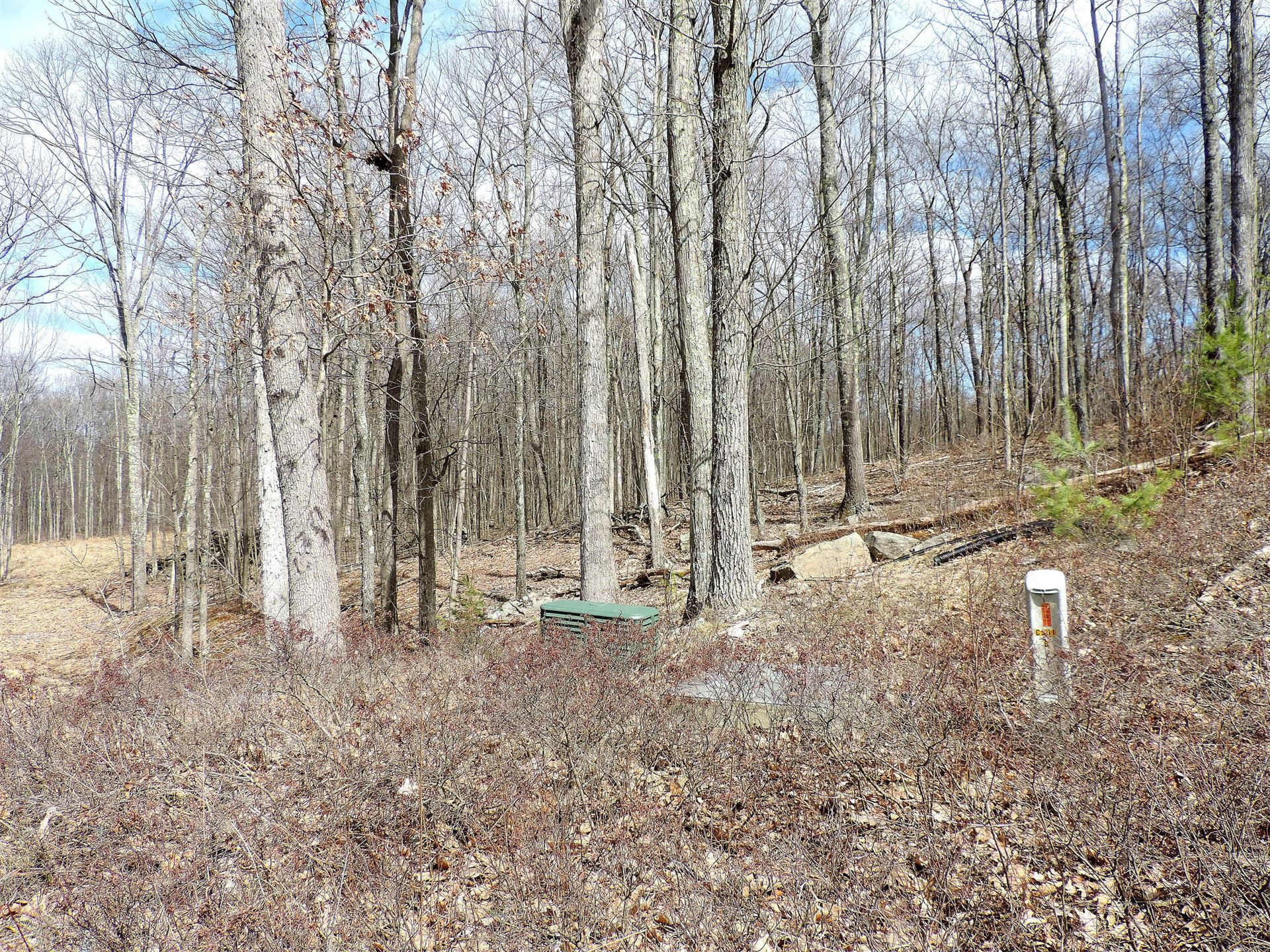 Photo of Lot #141 Wedgewood Dr, Hawley, PA 18428 (MLS # 20-1152)